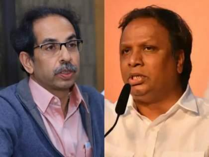 will you stop arresting the accused in the battle of corona? BJP leader ashish shelar questions to Thackeray government | कोरोनाच्या लढाईत आरोपींना अटकच करणे बंद करणार का? आशिष शेलारांचा ठाकरे सरकारला सवाल