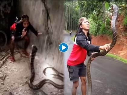 OMG : Video of woman catches giant snake with bare hands, you will shock   बाप रे बाप! महिलेने हाताने पकडला इतका मोठा साप की व्हिडीओ पाहून उडेल थरकाप.....