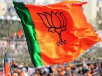 BJP MP enters house and assaulted, Tehsildar alleges BKP   भाजपा खासदाराने घरात घुसून मारहाण केली, तहसीलदारांचा आरोप