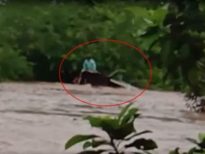 Flood : 5 passenger ST bus swept away in flood waters in yavatmal umarkhed   Flood : Video - पुराच्या पाण्यात वाहून गेली महामंडळाची बस, मदतीसाठी धडपड सुरू
