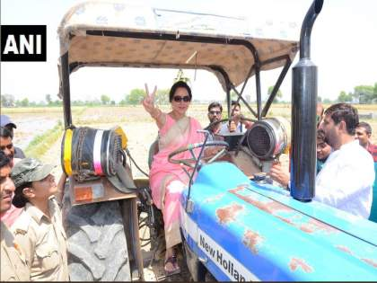 hema malini drive tractor in the farm after harvesting wheat crop photos viral | हेमा मालिनींचा हटके प्रचार; शेतात चालविले ट्रॅक्टर