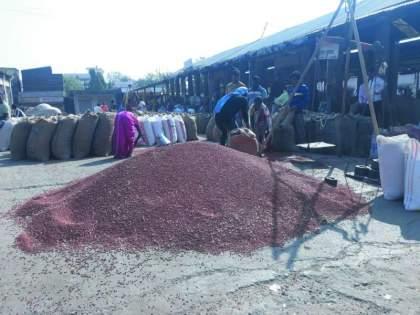 Khamgaon APMC : Market prices stabilized, but inflows declined   बाजारभाव स्थिर,मात्र आवक घटली