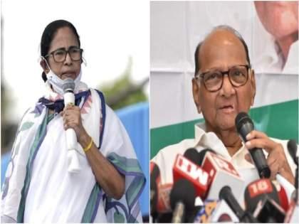 Pegasus: I can't talk to CM of Odisha, Delhi, Sharad Pawar; Mamata Banerjee attack on Narendra Modi   मी ओडिशाचे मुख्यमंत्री, दिल्लीचे मुख्यमंत्री अन् शरद पवारांशी बोलू शकत नाही; ममता बॅनर्जींचा हल्लाबोल