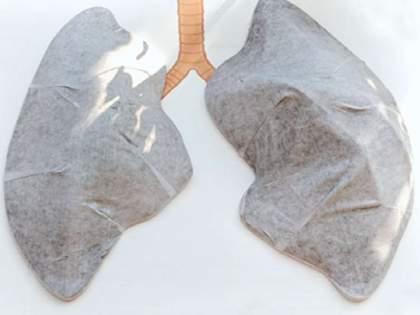 Mumbai's white lungs become black due to air pollution   वायुप्रदूषणामुळे मुंबईची पांढरी फुप्फुसे पडली काळी, वांद्रे येथे प्रयोगाअंती निष्कष