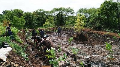 Commencement of Miyawaki forest cultivation at Shivaji University   शिवाजी विद्यापीठात मियावाकी जंगल लागवडीचा प्रारंभ