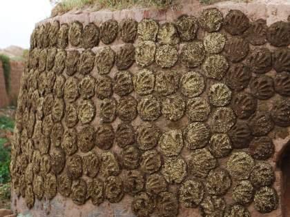 in uttar pradesh 4 die after inhaling toxic gas released by dung cakes   गोवऱ्यांमधून निघालेल्या विषारी वायूमुळे एकाच कुटुंबातील तिघांचा मृत्यू; गावावर शोककळा