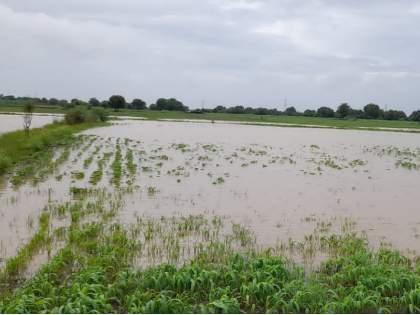 Danger of cloudburst to Marathwada; Within minutes the amount of rain increased rapidly   मराठवाड्याला ढगफुटीचा धोका; काही मिनिटांत वेगाने पाऊस पडण्याचे प्रमाण वाढले