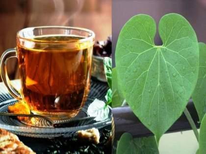 Drink Giloy juice or extract; Get skin like Bollywood actresses | रामबाण उपाय! हा काढा प्या; बॉलीवुड अभिनेत्रींसारखी त्वचा मिळवा
