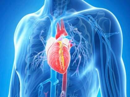 Causes and symptoms of heart blockage api | हार्ट ब्लॉकेजची लक्षणे आणि कारणे, जाणून घ्या काही नैसर्गिक उपाय..