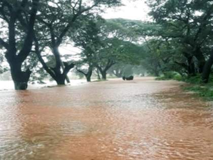 due to heavy rain Talere Kolhapur National Highway underwater   तळेरे कोल्हापूर राष्ट्रीय महामार्ग पाण्याखाली; फोंडाघाटात झाड कोसळून वाहतूक ठप्प