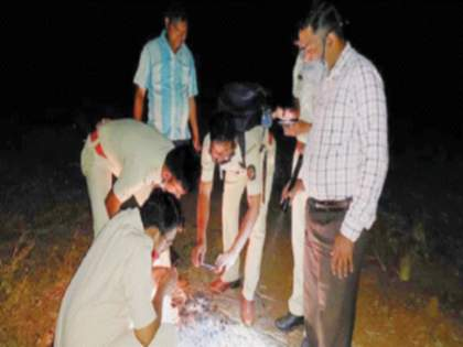 Fear of tiger sightings in Dandaguri area | वाघाच्या दर्शनाने दांडगुरी परिसरात भीती