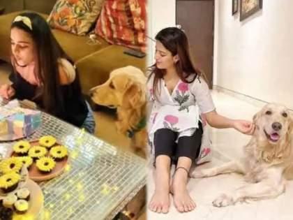 Actress Nidhhi Agerwal pet dog coco missing 1 lakh rupees award announces to find dog | बाबो, श्वान शोधून देणाऱ्याला 1 लाखांचं बक्षीस, 'मुन्ना मायकल' फेम अभिनेत्रीची घोषणा