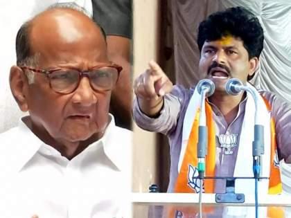 """BJP MLA Gopochand Padalkar Criticize Maha vikas Aghadi Government & Sharad Pawar   """"शरद पवार सांभाळताहेत निष्क्रिय मुख्यमंत्र्यांची मर्जी, पूरग्रस्तांना वाऱ्यावर सोडून महाविकास आघाडी सरकार...''"""