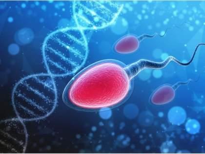 Coronavirus: Coronavirus infection reduces sperm production, medical experts observe   चिंताजनक! कोरोना विषाणू संसर्गामुळे शुक्राणू निर्मितीत घट, वैद्यकीय तज्ज्ञांचे निरीक्षण