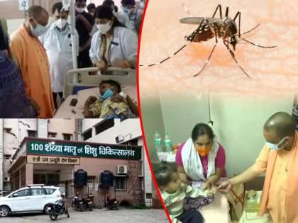45 Children Die In UP's Firozabad In 10 Days, Dengue Suspected, Probe On   उत्तर प्रदेशमध्ये डेंग्यूचे थैमान! 10 दिवसांत 45 चिमुकल्यांचा मृत्यू; लोकांमध्ये भीतीचे वातावरण
