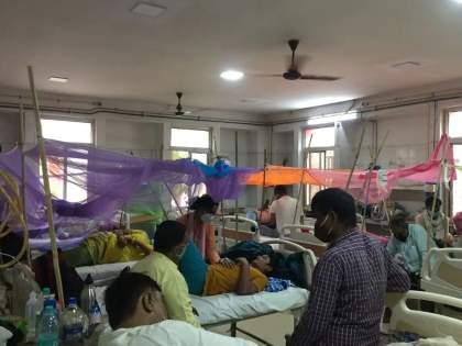 These two diseases related to dengue are more dangerous than dengue, death occurs in just one day | Dengue News: डेंग्यूपेक्षा अधिक धोकादायक आहेत डेंग्यूशी संबंधित हे दोन आजार, केवळ एका दिवसात होतोय मृत्यू
