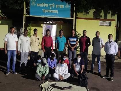 6 smugglers looking for big customers for Rs 40 lakh's mandul arrested | ४० लाखांचे दुतोंडी मांडूळ विक्रीस बडा ग्राहक शोधणारे ६ तस्कर गजाआड