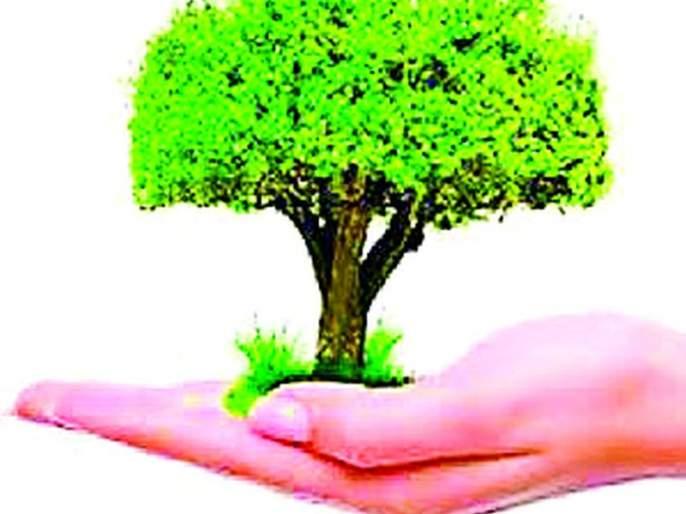 No planning of tree planting, no meeting   वृक्ष लागवडीचे ना नियोजन, ना बैठकी