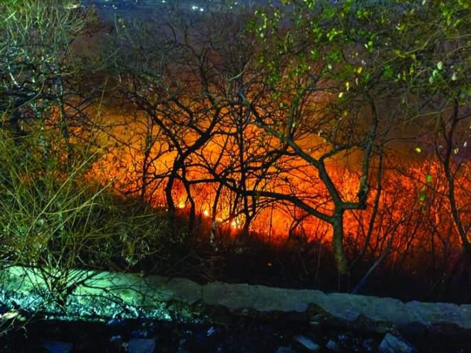 Fire in Rajur Ghat, damage to forest resources | राजूर घाटात आग, वनसंपदेचे झाले नुकसान