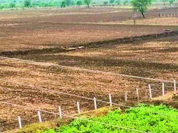 Land survey cases stalled | जमीन मोजणी प्र्रकरणे रखडली