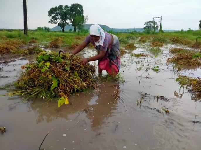 Shindwad was lashed by rains | शिंदवडला पावसाने झोडपले