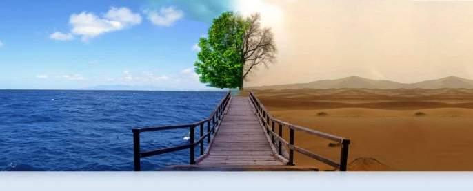 Water literacy from water literature | जलसाहित्यातून जलसाक्षरता