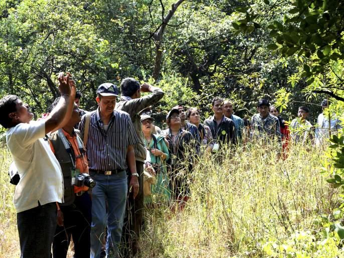 Experiencing stress on conservation | संवर्धनात्मकतेवर भर देणारी अनुभुती