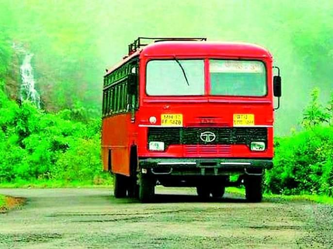Special buses will run from Gadchiraeli for tourism | पर्यटनासाठी गडचिराेलीवरून विशेष बसगाड्यांची हाेणार साेय