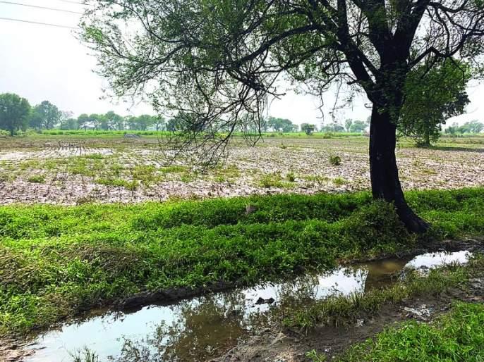 The governing body has not reached the thousands of Farmers | हजारो नुकसानग्रस्तांच्या बांधावर पोहचलीच नाही प्रशासकीय यंत्रणा