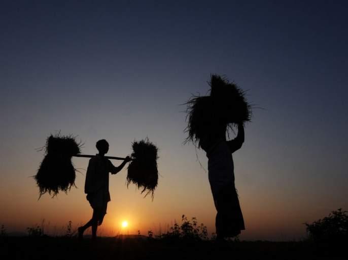 Wardha's farmer got a loan waiver; But no amount   वर्ध्याच्या शेतकऱ्याला कर्जमाफीचा संदेश तर आला; पण रक्कम नाही