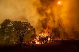 Fire to the mountains will fall in the depths | डोंगरांना आग लावणे महागात पडणार