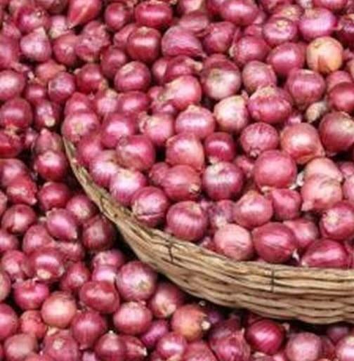 Stability in rates due to onion arrivals   कांदा आवक कमी झाल्याने दरांमध्ये स्थिरता
