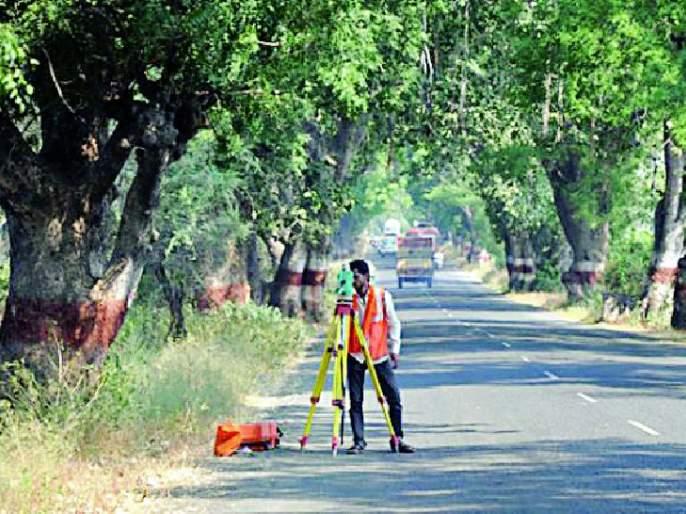 1100 trees will be broken for the road | रस्त्यासाठी ११०० वृक्ष तुटणार