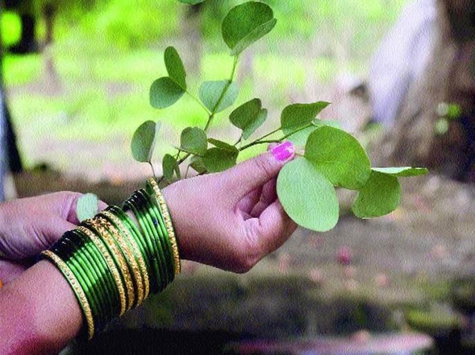Vijayadashmi today | आज विजयादशमी