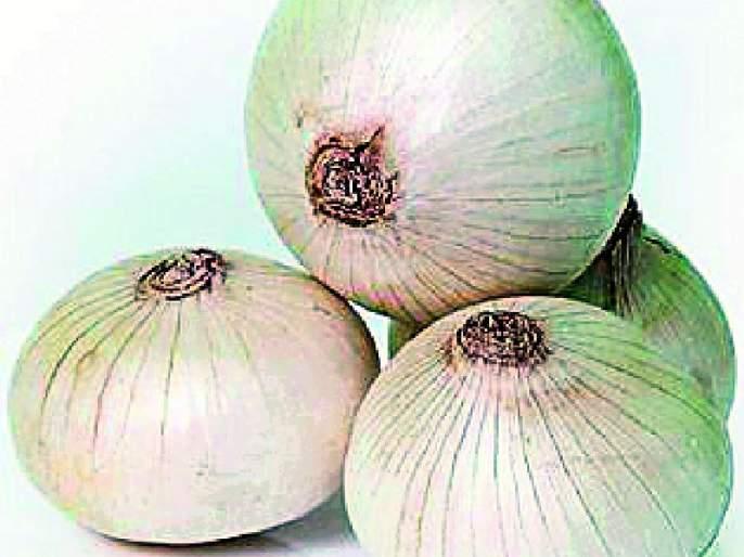 Restrictions on onion storage   कांदा साठवणुकीवर निर्बंध