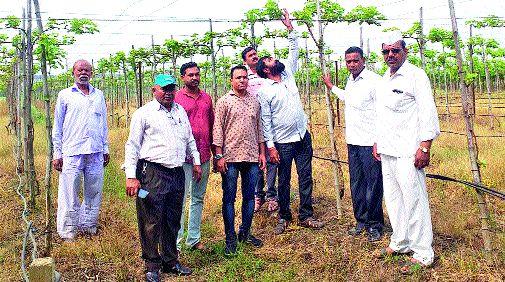 Demand for pollution action by company: Resolution from Gram Panchayat | कंपनीकडून प्रदूषणकारवाईची मागणी : ग्रामपंचायतीकडून ठराव