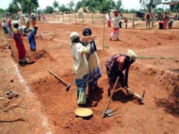 6500 laborers working on EGS work | रोहयोच्या कामावर ६५०० मजूर कार्यरत