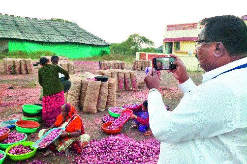 Onion stocks are being inspected daily | कांदा साठ्याची आता दररोज होणार तपासणी