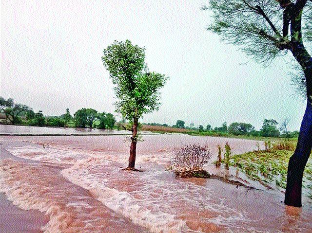 Demand for wet drought declared | ओला दुष्काळ जाहीर करण्याची मागणी