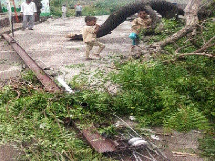 Windy winds, rains in the Ganges storm | वादळी वारे, पावसाने गंगामसल्यात हाहाकार