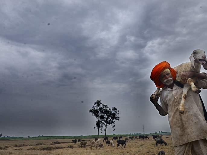 False burial, anxiety mixed, drying of farmers by strong rains | वळीव बरसला, चिंता मिटली, दमदार पावसाने शेतकरी सुखावला