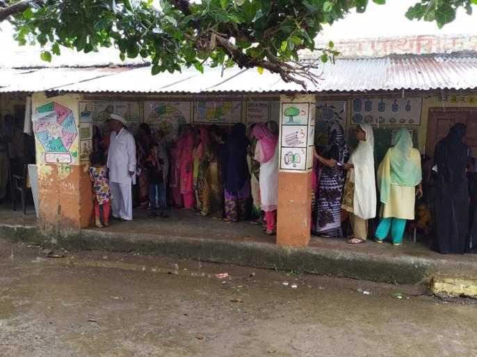 In Danapur, 65 percent voting was done | दानापूर येथे झाले ६५ टक्के मतदान