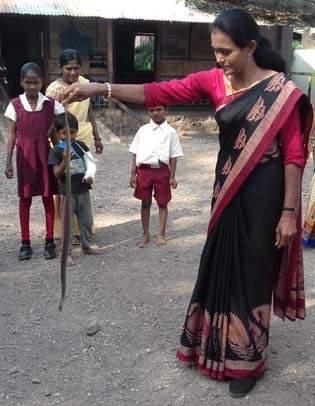 The snake has taken the awareness of ... | सापाला पकडून केली जनजागृती...