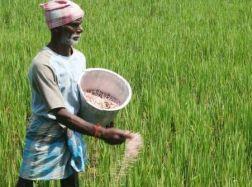 Development by adding technology to agriculture | शेतीला तंत्रज्ञानाची जोड देवून विकास