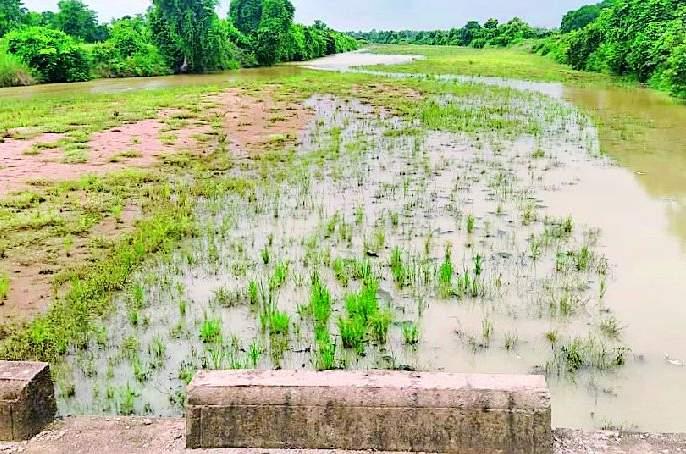 A little rain lost the joy of Shravan month | अल्प पावसाने श्रावण मासातील हर्ष लोपला
