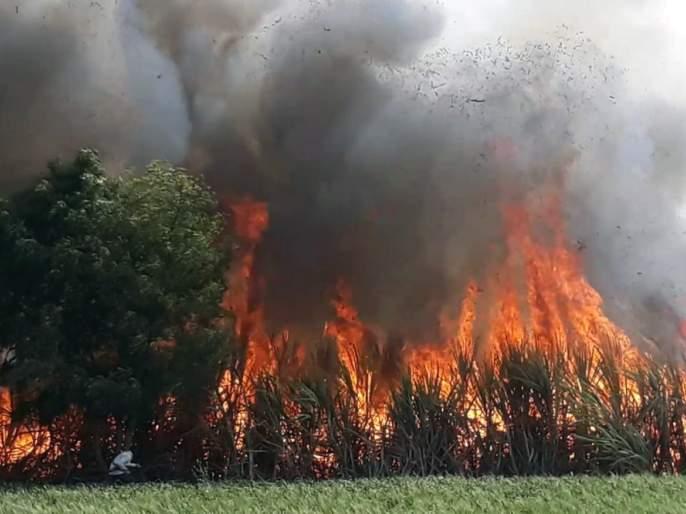 25 acres sugarcane burned in fire in Bhoggaon farm | भोगगाव शिवारात पंचवीस एकरातील ऊस भस्मसात