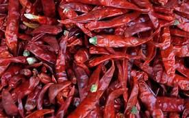 nashik,red,pepper,is,hitting,customers | लाल मिरचीचा ग्राहकांना बसतोय तिखट झटका