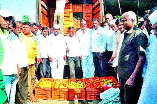 Launches tomato auction in Whiteley submarket | पांढुर्ली उपबाजारात टमाटे लिलावाचा शुभारंभ