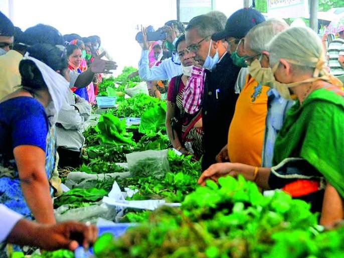 Katwal, Khaparkhuti, Chandanbatwa, Kunjircha Mewa; market of forest vegetables | काटवल, खापरखुटी, चंदनबटवा, कुंजीरचा मेवा; भरपावसात सजला रानभाज्यांचा बाजार