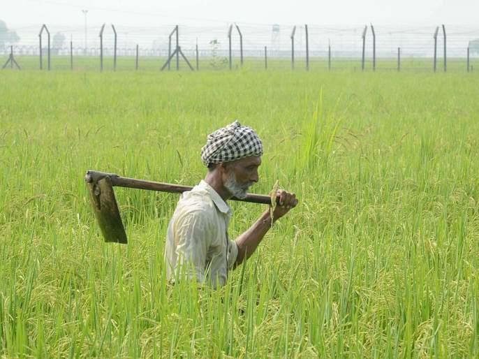 Will the new agriculture bill benefit mainly farmers or corporates? | नव्या कृषी विधेयकाचा फायदा मुख्यत: शेतकऱ्यांना होणार की कॉर्पोरेट कंपन्यांना?